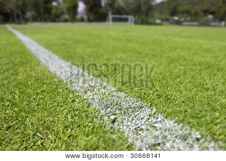 Green grass and sport lines painted at an outdoor playing field (artificial covering). Photographed with shallow DOF