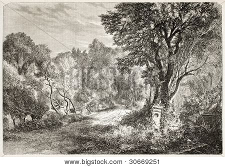 Vaugirard cemetery old view, Paris. Created by Moreau, published on L'illustration, Journal Universel, Paris, 1863
