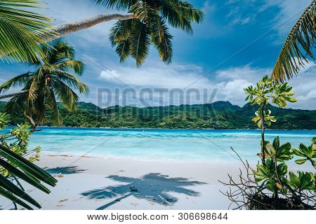Panorama Of Tropical Beach Lush Vegetation Blue Lagoon On Bright Sunny Day. Vacation Holidays Concep