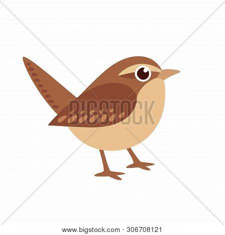 Carolina Wren, Small Northern American Bird And State Bird Of South Carolina, In Cute Cartoon Style.