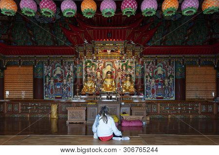 Busan, South Korea – April 2019: Buddha Images Inside The Main Sanctuary Of Haedong Yonggungsa, Budd