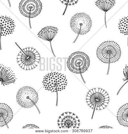 Dandelion Seamless Pattern. Dandelions Grass Pollen Plant Seeds Blowing Tranquil Wind Fluff Flower M