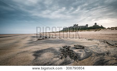 Tha Ancient Fortress Of Bamburgh Castle Standing Above The Sand Dunes Behind Bamburgh Beach In North