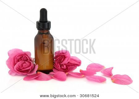 Rose flower petals and buds with aromatherapy essential oil glass bottle isolated over white background. Rosa rugosa.