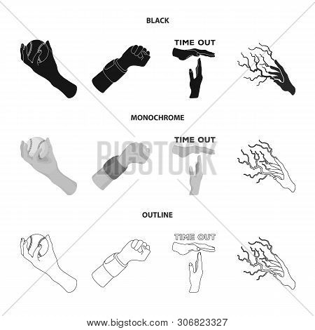 Vector Design Of Animated And Thumb Icon. Set Of Animated And Gesture Vector Icon For Stock.