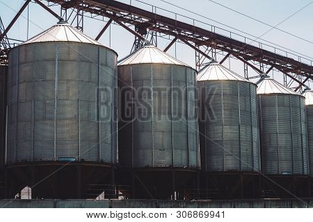 Agricultural Silos. Storage And Drying Of Grains, Wheat, Corn, Soy, Sunflower. Industrial Building E