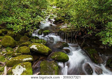 Kephart Prong In Great Smoky Mountains National Park In North Carolina, United States