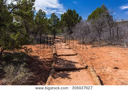 Timber Creek Overlook Trail In Zion National Park In Utah, United States