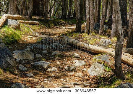 Murphy Creek Trailhead In Yosemite National Park In California, United States