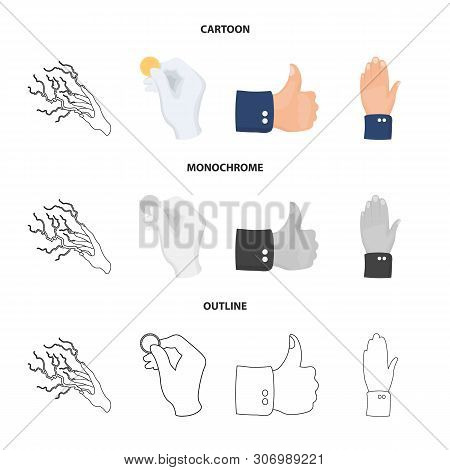 Isolated Object Of Animated And Thumb Icon. Collection Of Animated And Gesture Stock Vector Illustra