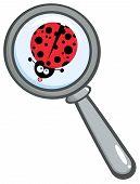 Magnifying Glass With Ladybug Sticking Its Tongue Out poster