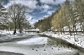 Winter Frozen River with ducks and a church behind poster