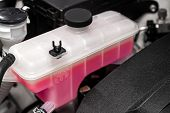 Close-up white expansion tank with pink antifreeze. Car coolant level in radiator system in car, automotive part. poster