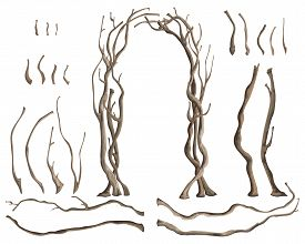 Rustic Arch With Tree Branches And Isolated Design Elements On White Background. Vector Illustration