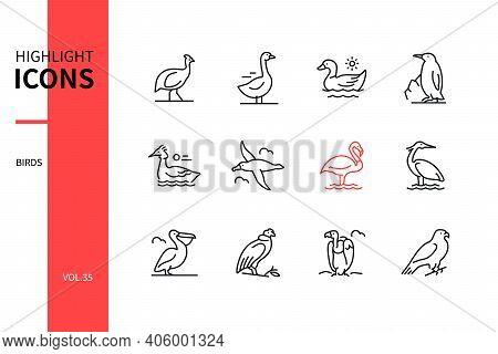 Bird Species - Modern Line Design Style Icons Set