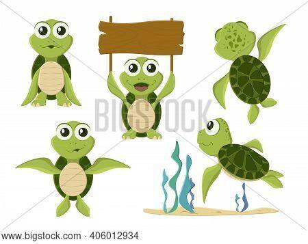 Cartoon Vector Turtle In Various Action Poses. Cartoon Turtle. Cute Tortoise Wild Animal Vector Char