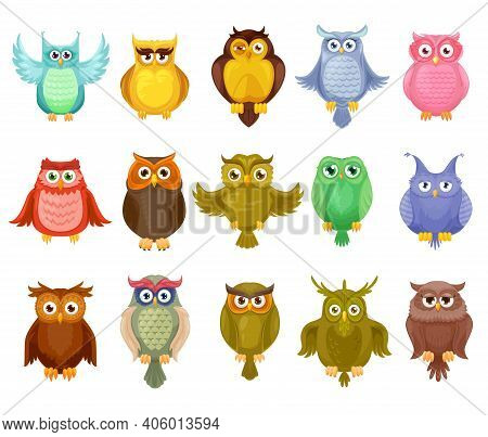 Owl Birds Vector Design Of Cute Cartoon Owlets. Colorful Feathered Barn, Long Eared And Eagle Owls W