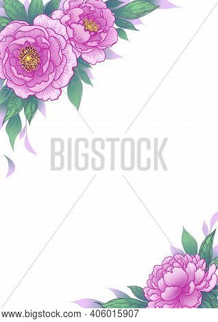Elegant Border With Pink Flowers And Green Leaves. Hand Drawn Peony On White Background. Vector Flor