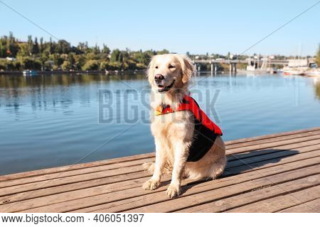 Dog Rescuer In Life Vest On Wooden Deck Near River