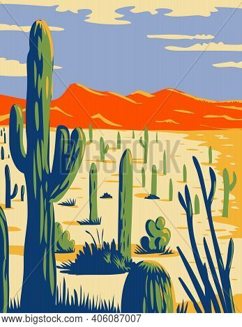 Wpa Poster Art Of Saguaro National Park With Giant Saguaro Cactus Growing In Sonoran Desert In Pima
