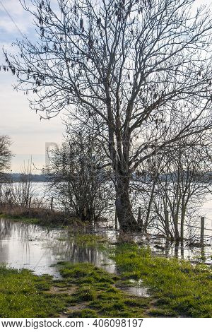 Landscape With Flooded River Maas In Bergen - Noord Limburg, The Netherlands