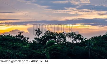 Silhouette Of Forest With Palm Trees On Beach At Sunset