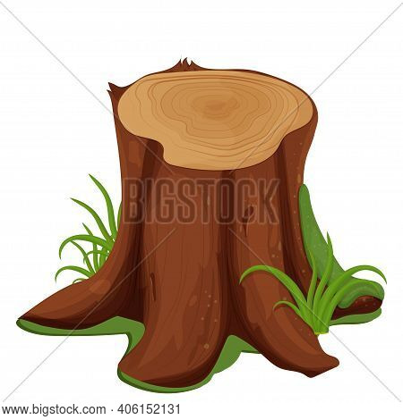 Rotten Stump Of Tree With Moss And Grass In Cartoon Style Isolated On White Background. Detailed Dra
