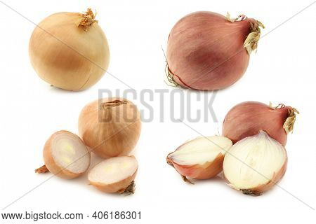 Big brown onions and sweet onions on a white background