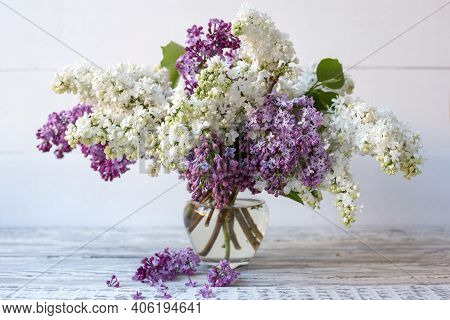 White Lilac And Purple Lilac In Glass Vase On Wooden Table. Spring Branches Of Blooming Lilac Festiv