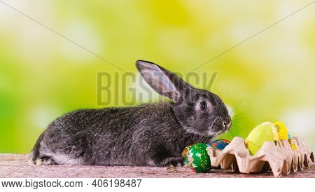 A Cute Ultimate Gray Bunny Spreads Its Ears On A Green Decorated Background Next To Painted Easter E