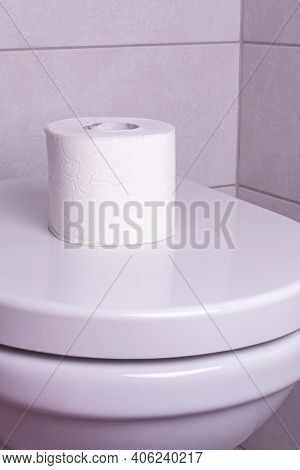A Roll Of Toilet Paper On The Toilet Bowl. The Concept Of The Supply Of Toilet Paper.