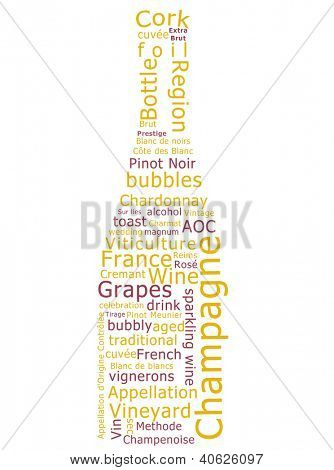 Word cloud made form terms used in the production of champagne in the shape of a sparkling wine bottle.