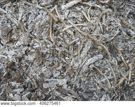Gray Wood Ash Texture Background, Grey Ashes From The Fire