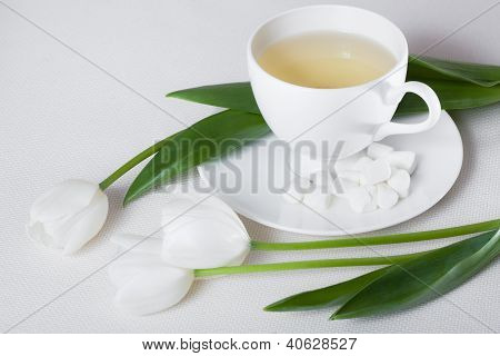 Cup of Tea and White Tulip Flowers