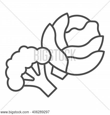 Cabbage And Broccoli Thin Line Icon, Diet Concept, Vegetable Sign On White Background, Fresh Cabbage