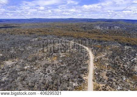 Aerial View Of A Dirt Road In A Forest Regenerating From Bushfire In Kanangra-boyd National Park In
