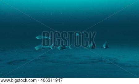 Group Of Great White Sharks Swimming In The Deep Blue Ocean Water, Underwater Scene Of White Sharks,