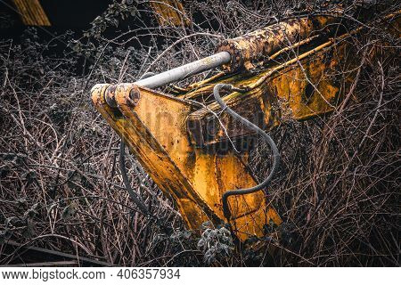 Old Abandoned Yellow Excavator In A Garden On A Frosty Morning