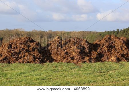 Manure For Agriculture