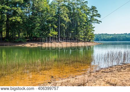 Drought Conditions At Lake Lanier In Georgia With Water Levels Low Exposing The Tree Roots And Shall