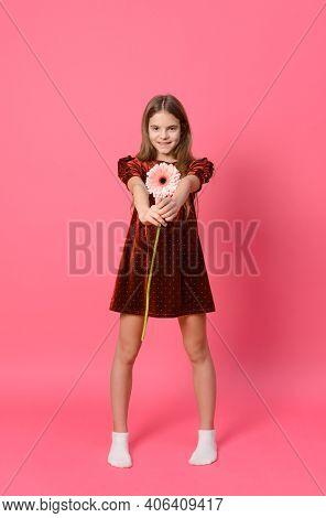 Girl 10 Years Old In A Red Dress With A Pink Gerbera Flower In Her Hands On A Pink Background, Teena