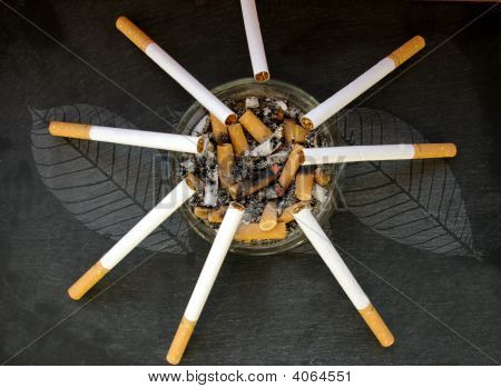 Cigarettes Balanced On A Ashtray