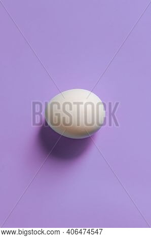 Easter Concept. White Egg On A Pink Background In Pastel Colors. The Chicken Laid The Egg. Natural O
