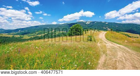 Road Through Pasture On The Hill In Summer. Beautiful Rural Landscape Of Carpathian Mountains On A S