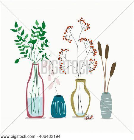 Set Of Minimalistic Elegant Glass Vases With Drset Of Minimalistic Elegant Glass Vases With Dried Pl