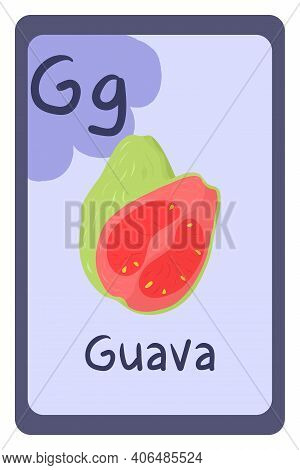 Abc Education Card In Cartoon Style On Colorful Background, Letter G - Guava. Alphabet Vector Illust