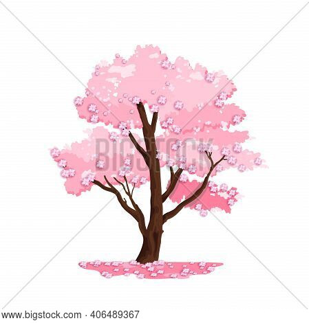 Spring Tree Vector Nature Illustration, Blossom Japanese Sakura, Wooden Trunk, Pink Crown. Isolated