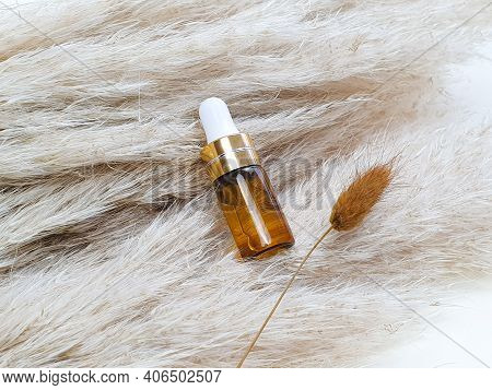 Unbranded Bottle Of Cosmetic Liquid Transparent Gel And Brawn Herb Lagurus On Cortaderia Or Pampas G