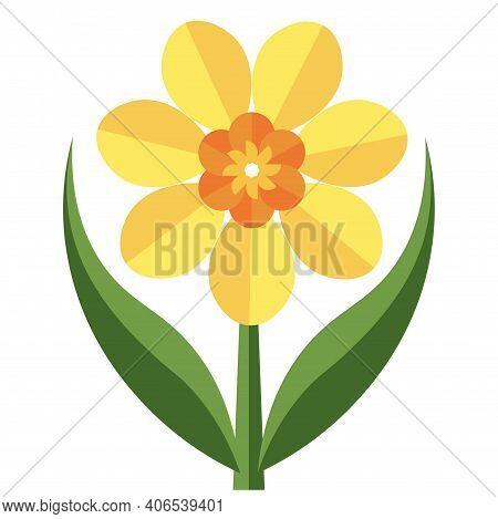 Daffodil Flower Vector Illustration On A White Background