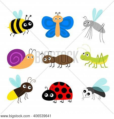 Grasshopper, Fly, Firefly, Ant, Mosquito, Bee Bumblebee, Butterfly, Snail Cochlea, Lady Bug Ladybird